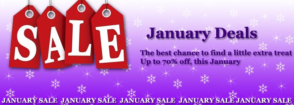 January Sale Banner copy