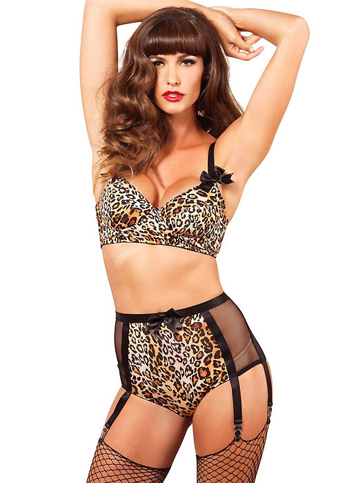 Leg Avenue 2 Piece Animal Print Bra And Matching High Waist 6 Hook Garter